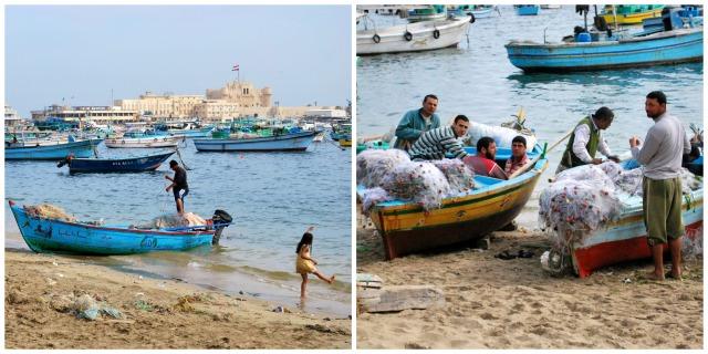 Egyptian Coast
